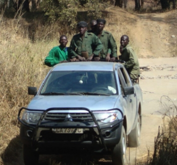 Cameroon Elephant Anti-Poaching