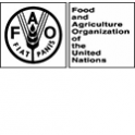 Food and Agriculture Organisation of the United Nations Logo