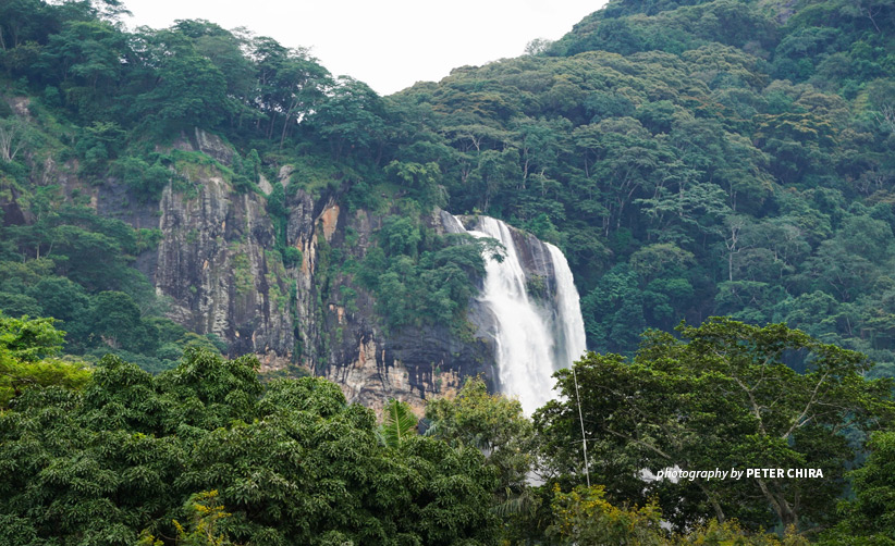 Kilombero Valley forest landscape and waterfall