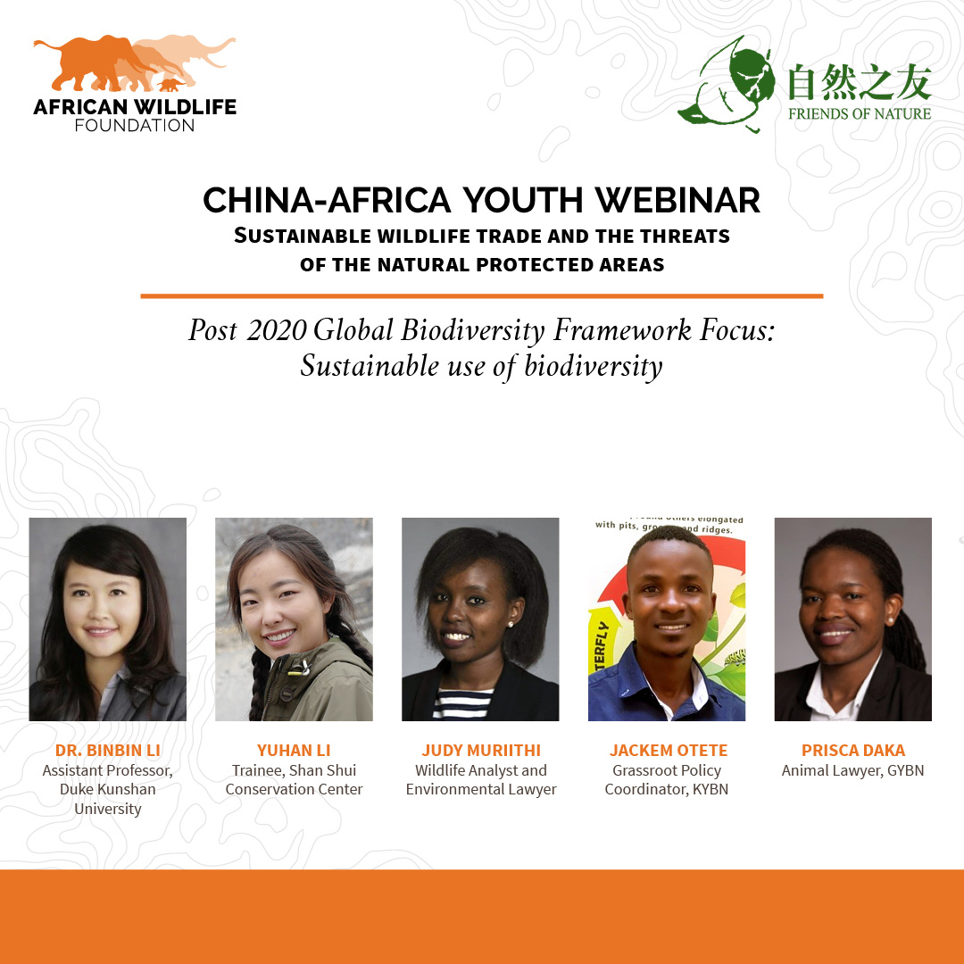AWF-FON China-Africa Youth Webinar -October No Dates.jpg