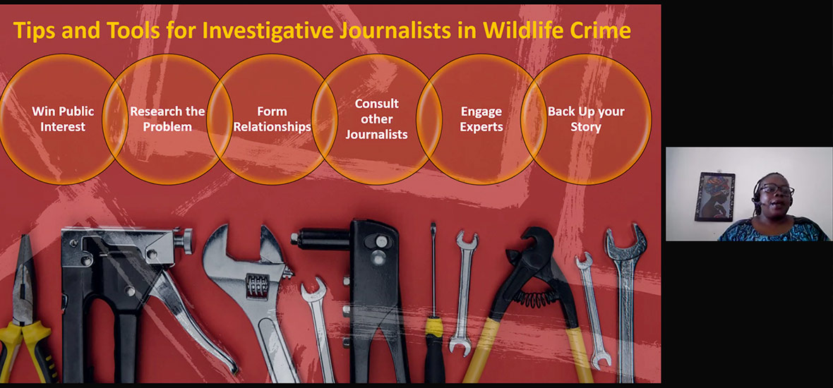 Screenshot of IWT journalism presentation by Didi Wamukoya