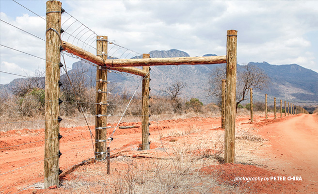 AWF-constructed security fence at Ngulia Rhino Sanctuary
