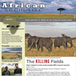 2013 African Wildlife News