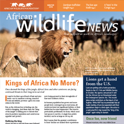 2015 Winter African Wildlife News
