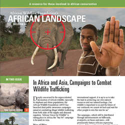 African Landscape News 2013, Issue 2