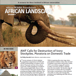 African Landscape News 2013, Issue 3