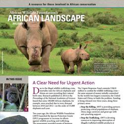 African Landscape News