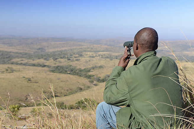 A ranger monitors activity atop a hill at Hluhluwe iMfolozi Park in South Africa. Photo by: Billy Dodson