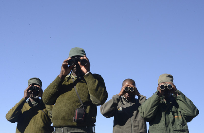 Wildlife rangers with binoculars. Photo: Billy Dodson