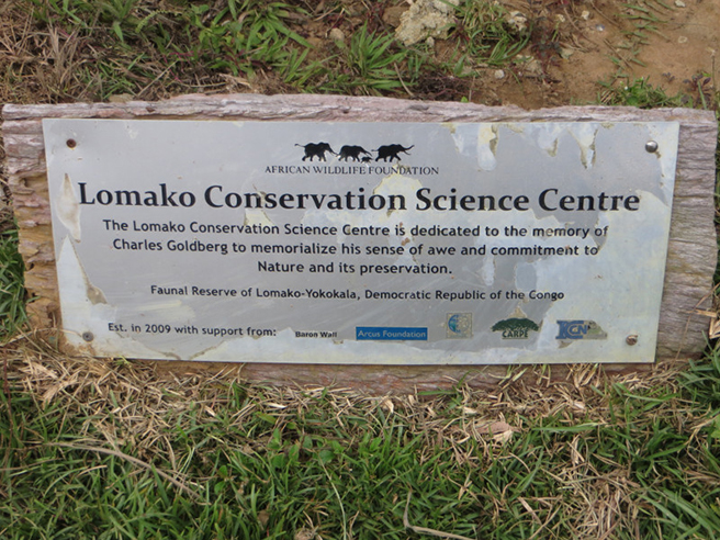 Lomako Conservation Science Center in Democratic Republic of Congo. Photo by Jef Dupain