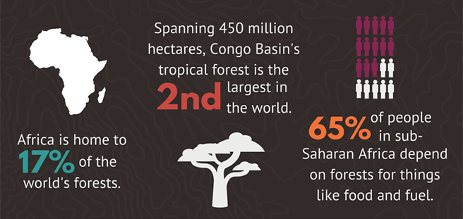 Get the Scoop on Deforestation in Africa
