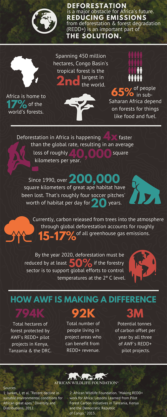 Africa's Deforestation Infographic