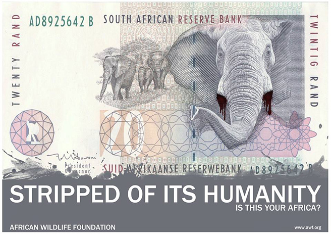 The South African R20 note manipulated to show a poached elephant