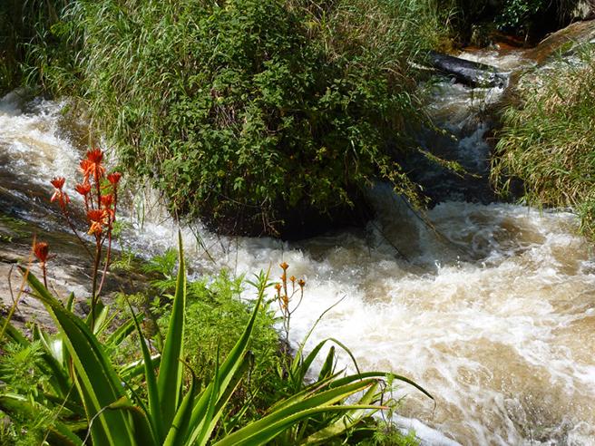 Imatong Watershed