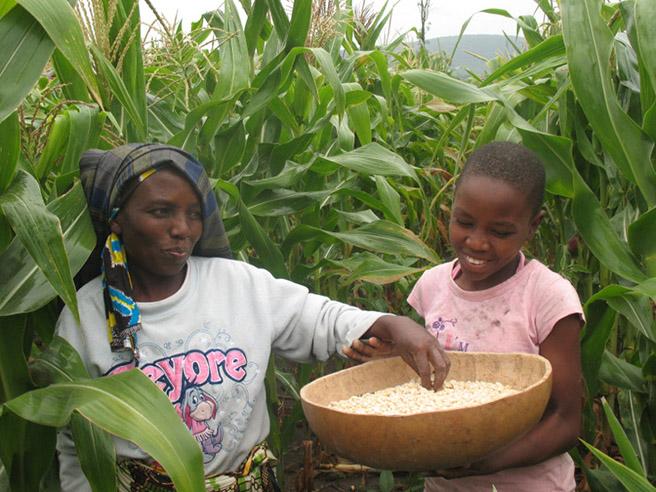 Kondoa Harvest