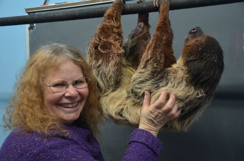AWF safari sweepstakes winner Leslie Wainger with a sloth