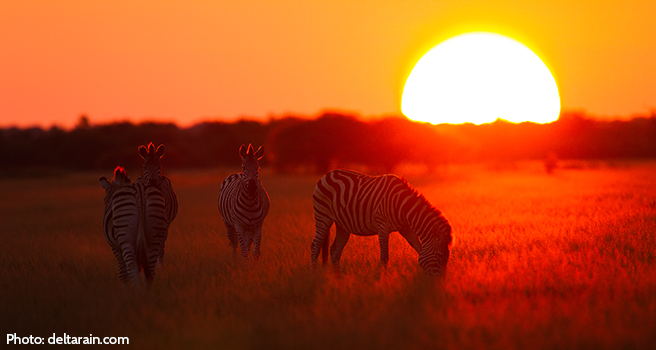 Planning for the Protection of Africa's Wild Lands