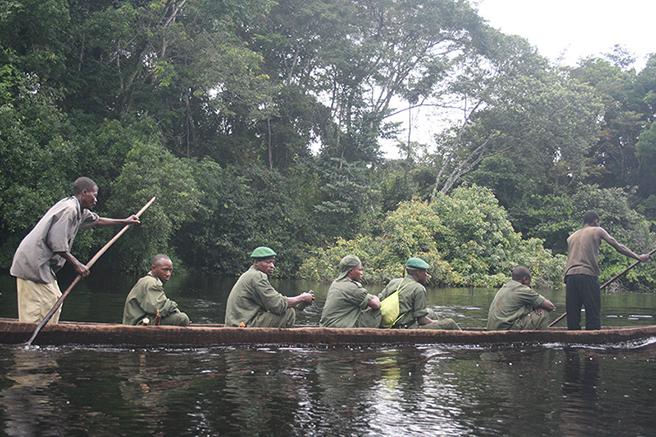 Rangers at Iyondji Community Bonobo Reserve