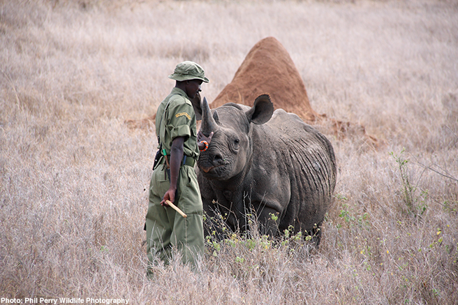 Protecting the Protectors of Africa's World Heritage