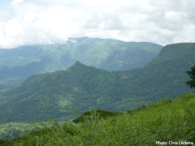 South Sudan's Imatong Mountains, a critical source of water and biodiversity.