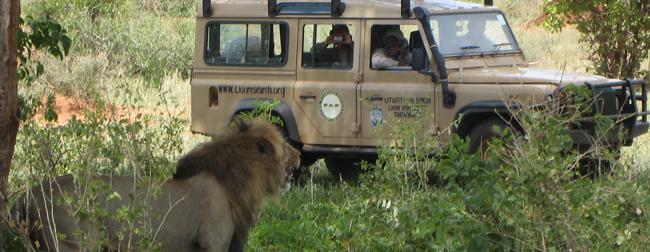 Wildlife_Conservation