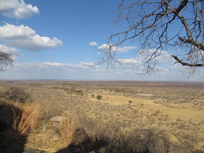 Zimbabwe/Southern Africa AWF scoping trip