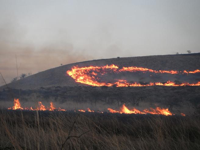 Chyulu Hills fire
