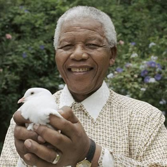 Nelson Mandela with dove