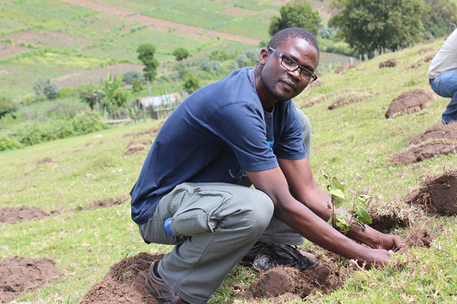 AWF Conservation Management Trainee George Okwaro plants trees in the Mau Forest Complex
