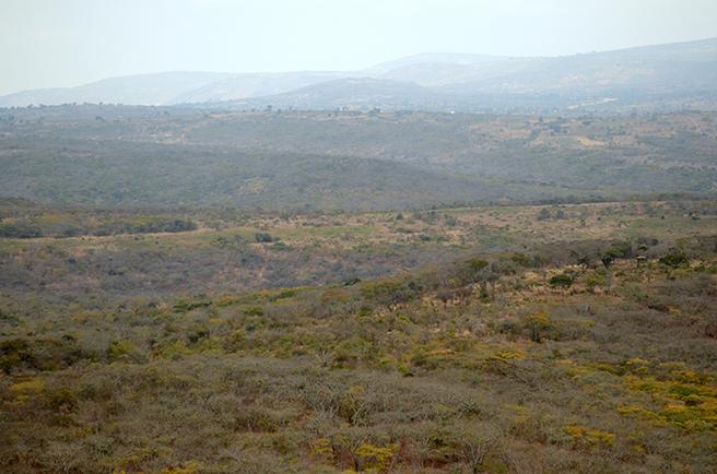 Kolo Hills Landscape