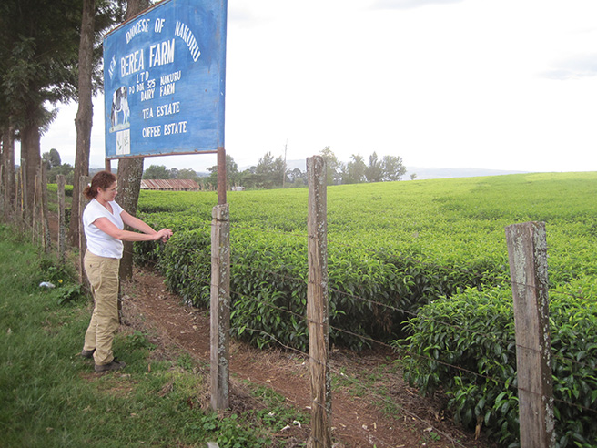 Photo of Leslie examining coffee plants at a coffee farm in Kenya. Photo by: Leslie Funk