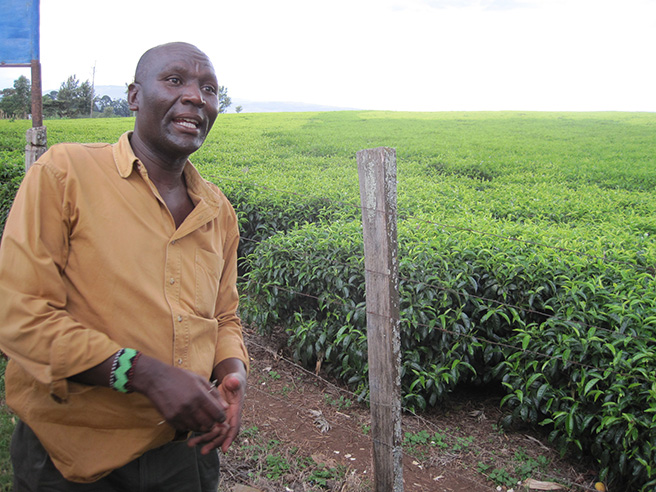 A guide explains Kenya's coffee farming business to the GMU students. Photo by: Leslie Funk