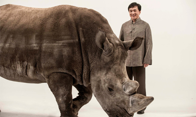 Jackie Chan and Spike the rhino