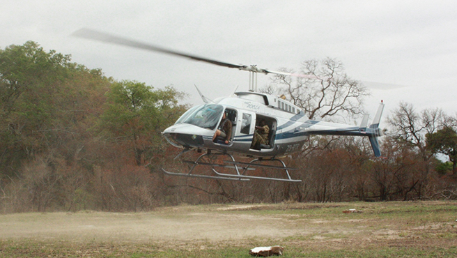 Helicopter lift off at Sabi Sands
