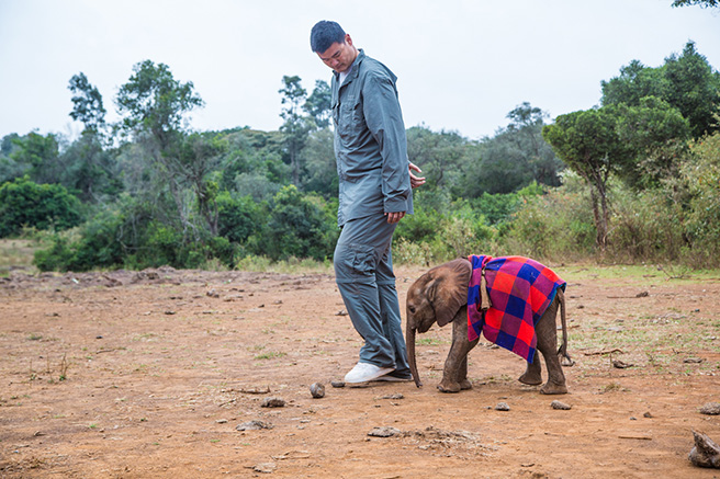 Yao Ming and an orphaned elephant calf