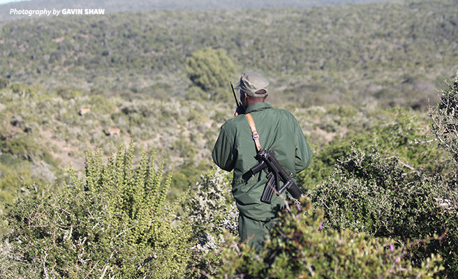 A scout patrolling a rhino conservancy in South Africa