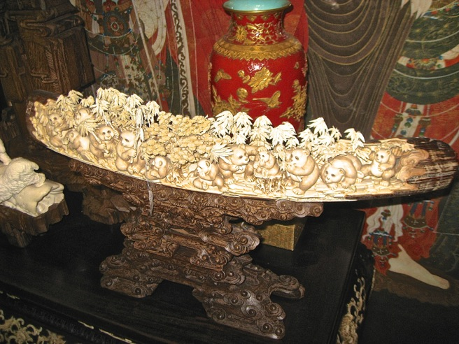 Ivory for sale