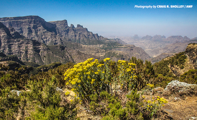 Ethiopia's Simien Mountains