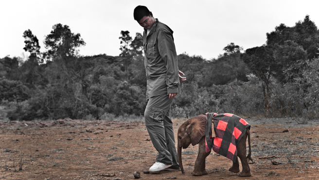 Yao Ming with elephant