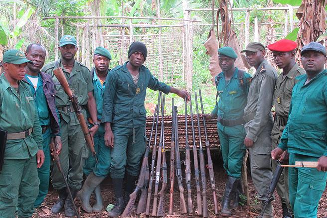 Anti-poaching patrols in Dja