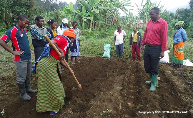Farmers in southern Tanzania