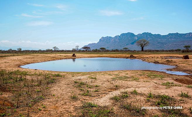 Photo of semi-arid savannah landscape in Africa