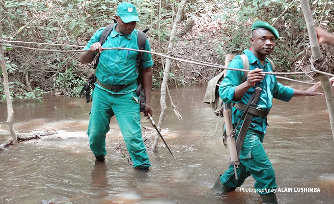 Photo of rangers in Dja Faunal Reserve crossing river during routine patrols