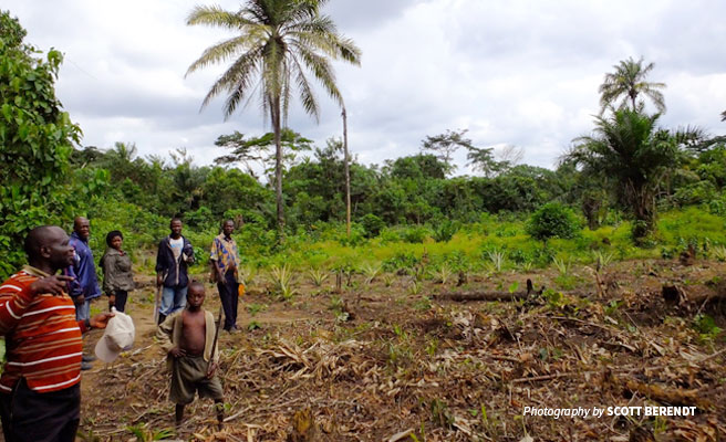 Photo of small-scale forest community farmers on farm in DRC