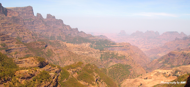 Photo of Simien Mountains National Park landscape