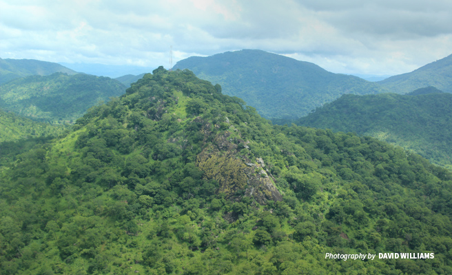 Photo of Udzungwa Mountains landscape in wildlife-rich Southern Tanzania