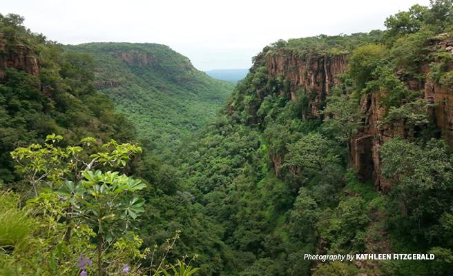 Photo of Dindefelo Valley in Niokolo-Koba National Park in Senegal
