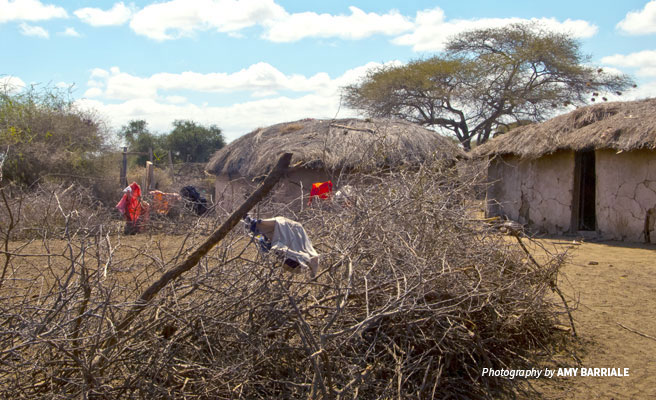 Photo of temporary settlements constructed by group ranch pastoralists