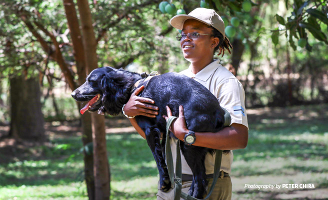 Photo of sniffer dog and handler trained through AWF's Canines for Conservation