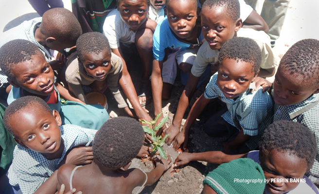 Photo of Lupani Community School students planting a seedling